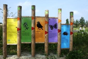 Biodiversiteitsmeter-Paulien-Beelen